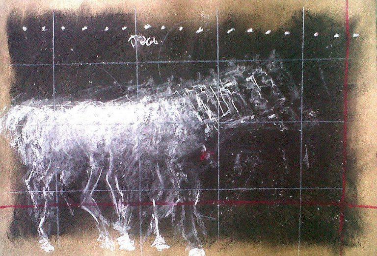 Riaan van Zyl : Scientific blur