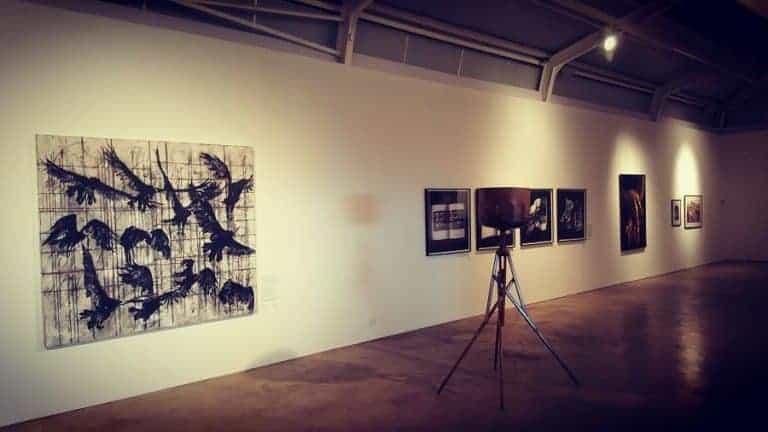 Riaan van Zyl art exhibition Cape Town