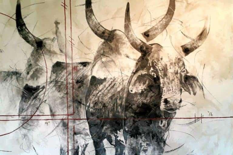 Riaan van Zyl : Nguni herd